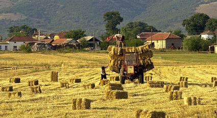 ICT in Agriculture | Aqua-tnet | Scoop.it