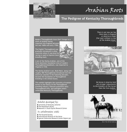 Arabian Roots: The Pedigree of Kentucky Thoroughbreds | University of Kentucky Research | UKnowledge | Ultimate Horsemanship | Scoop.it
