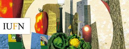 Il est urgent de mettre en place une gouvernance alimentaire locale   LGL* LOCAL*GLOBAL*LOCAL   Scoop.it