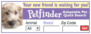 Pet adoption: Want a dog or cat? Adopt a pet on Petfinder | Food for Pets | Scoop.it