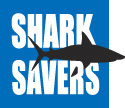Shark Savers congratulates Florida, the first state to specifically protect hammerhead and tiger sharks | All about water, the oceans, environmental issues | Scoop.it