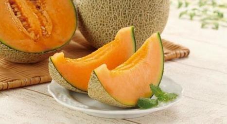 Les 5 bienfaits du melon pour la santé - Bio à la Une.com | Seniors | Scoop.it