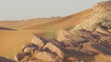 Exceptional Dubai Desert Safari Experience | My Favorite | Scoop.it