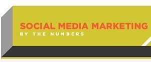 Social Media Marketing by the Numbers (infographic)   visualizing social media   Scoop.it