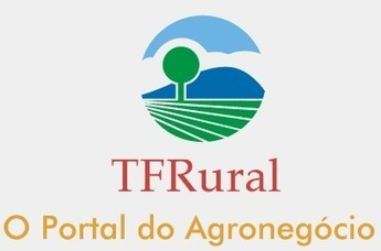 Categories - Fazendas à venda em SP, Bahia, Parana, Tocantins e MS, Fazendas mato grosso | TF Rural | Real Estate | Scoop.it