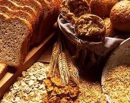 Nuevas evidencias científicas sobre los beneficios del pan integral | Base de datos médica | Scoop.it