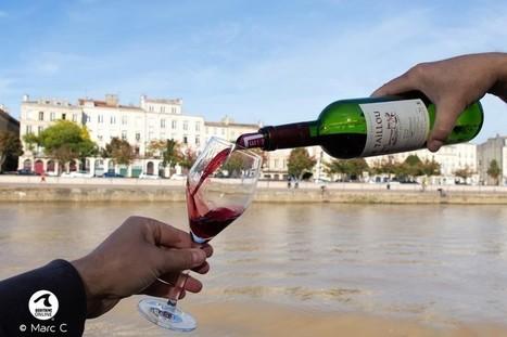 Influence des technologies numériques sur les consommateurs de vin | My wine, heritage and communication press review | Scoop.it