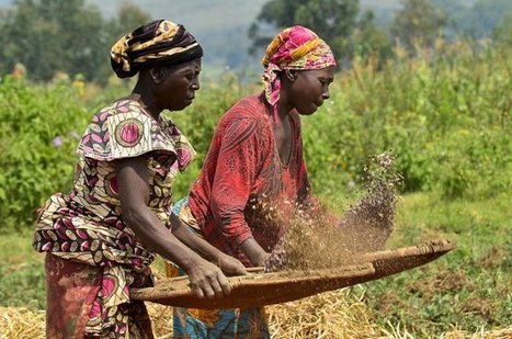 Scaling-up the climate-smart agricultural sweet spot | CCAFS ... - cgiar | Climate Smart Agriculture | Scoop.it
