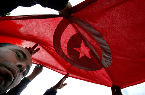 Tunisia's Hannibal TV says owner released| Reuters | Coveting Freedom | Scoop.it