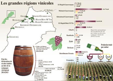 La route du vin, un voyage séculaire à travers les grandes caves du ... - L'Économiste | investissement maroc | Scoop.it