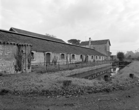 L'histoire des distilleries d'eau-de-vie de cognac | Le Vin et + encore | Scoop.it