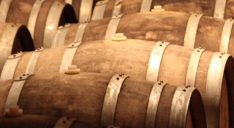 Spanish wines – maybe not well-known enough | Came4Wine ... | Wine Travel | Scoop.it