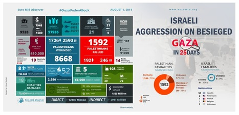 Statistics on Israeli aggression on Gaza in 25 days | History and Society | Scoop.it