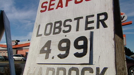 Lobster boat quotas not being considered, say MPs - CBC.ca   Nova Scotia Fishing   Scoop.it