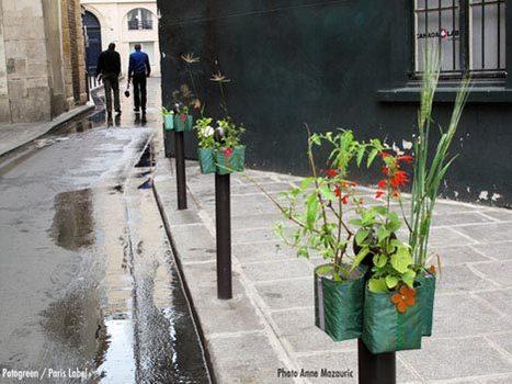 Pocket Gardens Sprout on Paris's Anti-Parking Posts | flânerie | Scoop.it