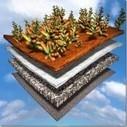 Les toitures végétalisées  : une certaine vision de l'Art Floral | Immobilier | Scoop.it