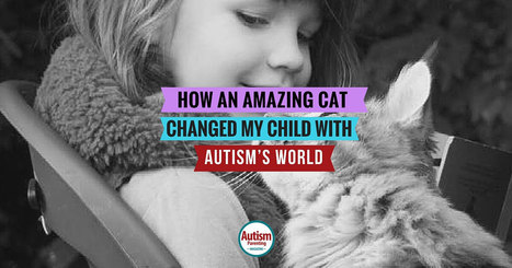How an Amazing Cat Changed My Child with Autism's World - Autism Parenting Magazine | Autism Supports | Scoop.it