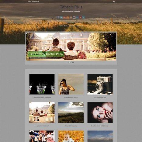 WordPress Themes - InkHive.com | Las herramientas del Community Manager | Scoop.it