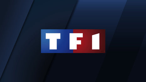 TF1 teste la publicité ciblée sur la TV de rattrapage | Contenus vidéo sur internet : de la puissance à l'exigence | Scoop.it