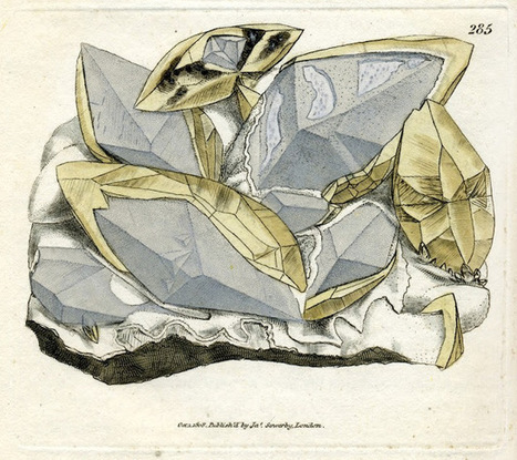 BGS Geoheritage – images from the collections: CALX carbonata (calcite) from British mineralogy by James Sowerby 1802-1817 | Mineralogy, Geochemistry, Mineral Surfaces & Nanogeoscience | Scoop.it