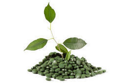 What are the Health Benefits of Spirulina? - Global Healing Center   Natural Health   Scoop.it