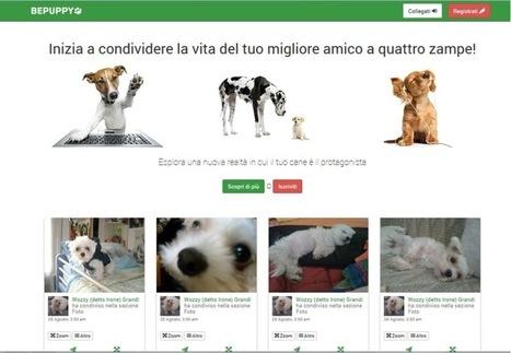 BePuppy, boom di iscrizioni per il social network per animali - Diregiovani | web mkt | Scoop.it