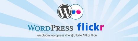 FlickrPhotogallery : un plugin wordpress che sfrutta le API di Flickr | Conoscere Wordpress | Scoop.it