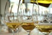 Anche il vino bianco fa buon sangue. La presenza di acido caffeico lo incorona protettore cardiovascolare | vinokultura | Scoop.it