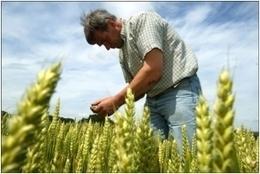 ¿Qué es la agricultura ecológica? - ECOticias.com | Agricultura Ecológica | Scoop.it