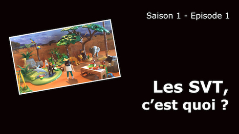 Sciences de la vie et de la Terre - Saison 1 : M'T SVT, les SVT pour tous ! | TICE au Maroc | Scoop.it