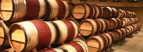 #Wine Exports Healthy as Value Rises | Vitabella Wine Daily Gossip | Scoop.it
