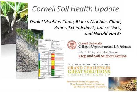 La mise à jour de l'évaluation de santé du sol par l'Université Cornell | MOF Matière Organique Fugace réactive du sol | Scoop.it