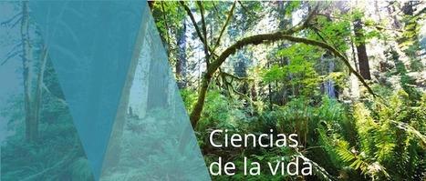 Nace BIOLATAM en Bogotá, punto de encuentro de la biotecnología en Latinoamérica | Ciencia, la Tecnología e Innovación | Scoop.it