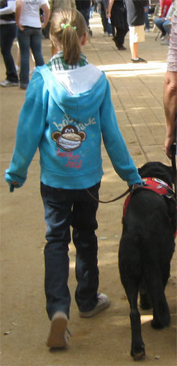 Autism Service Dogs, A Pawsitive Solution | Special Needs Travel Mom | Special Needs, Special Creativity | Scoop.it