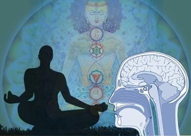 Harvard Study Unveils What Meditation Literally Does To The Brain | wellness | Scoop.it
