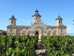 Saint Estephe 2010: complex wines with silky tannins | Vitabella Wine Daily Gossip | Scoop.it