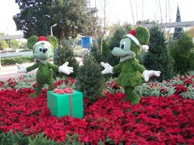 Disney Vacation Club offers members multiple holiday discounts - Examiner.com | Villa and Holiday Rentals | Scoop.it