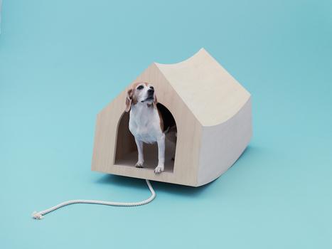 TREND PET | Food for Pets | Scoop.it