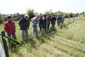 Systèmes Agro-écologiques Laitiers du Sud-Aveyron (SALSA) | Minagri | Gardarem les paysans | Scoop.it