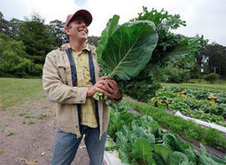 Support for local food systems? Brilliant. | Washtenaw Food News | Scoop.it