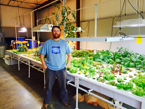 USA - Sustainability: Aquaponic Farming | Aquaponics in Action | Scoop.it