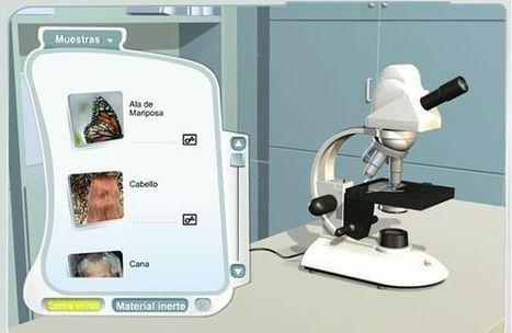 Microscopio virtual, para que los peques observen seres vivos y elementos inertes | educacion-y-ntic | Scoop.it