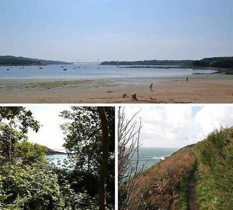 À Brest, la biodiversité est d'abord marine | L'environnement en Bretagne | Scoop.it