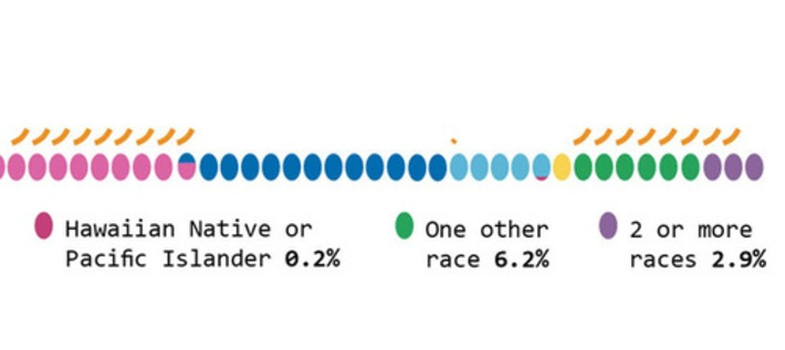 Race and ethnicity in America | Colorful Prism Of Racism | Scoop.it
