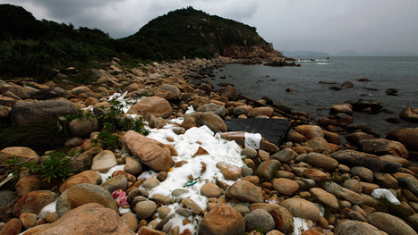 China's coastal waters pollution doubles in just one year — RT News | Daniel.F-GeogLog | Scoop.it