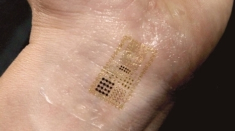 Electronic Skin Moves Us Closer to Cyborgs | Science And Wonder | Scoop.it
