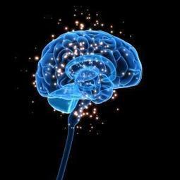 Probiotics Change Brain Activity, Emotional Response | yogurt brain | Scoop.it