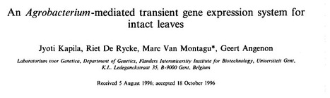 Classic paper: Plant Science: An Agrobacterium-mediated transient gene expression system for intact leaves (1997) | Plants and Microbes | Scoop.it