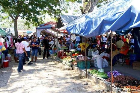 Market Scene in San Igancio Town in the Cayo District of Belize | Belize in Photos and Videos | Scoop.it