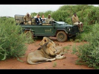 Africa Safaris and travel 2015 - Botswana, Zimbabwe & Zambia - YouTube   TOURISM CONTENT CURATOR   Scoop.it